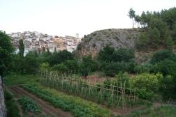 Huertas de Bogarra